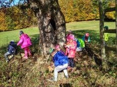 Podzimní hrátky v přírodě