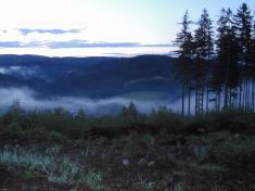 Mlha táhnoucí sek Vlčkové