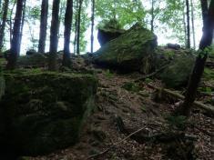 Fotografie skal v Držkové