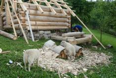 Zakládání ovčínu